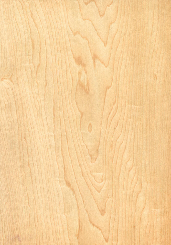 Spalted Maple Veneer Maple Wood Veneer